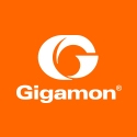 Picture of Gigamon - GigaSECURE